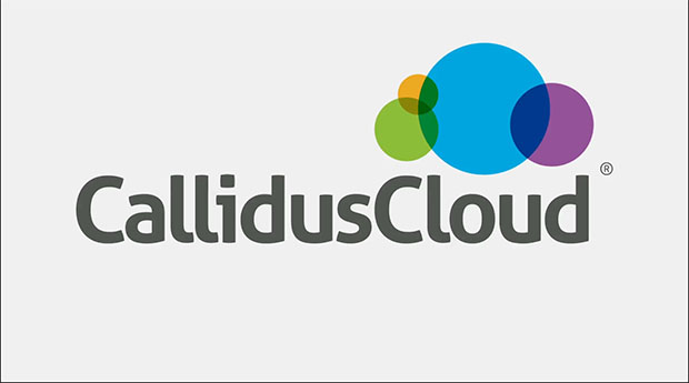 CallidusCloud Insurance--Product Introduction